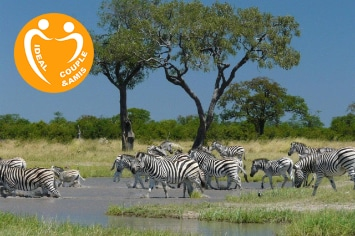 BOTSWANA – FULLY SERVICED SAFARI Southbound